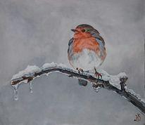 Vogel, Winter, Rotkehlchen, Eiszapfen