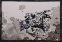 Schildkröte, Tinte, Inktober, Zeichnungen
