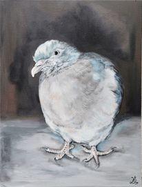 Taube, Vogel, Malerei