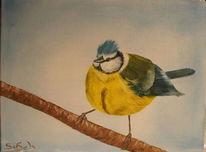 Blaumeise, Vogel, Ölmalerei, Malerei