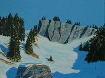 Winter, Berge, Wald, Ski