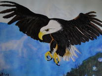 Alaska, Weißkopfseeadler, Denali, Adler