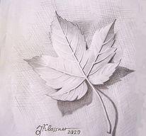 Herbst, Blätter, Natur, Zeichnungen