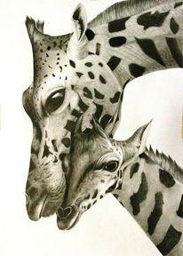 Tierwelt, Giraffe, Zeichnungen, Baby