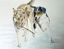 Schnappschuss, Bewegung, Hund, Winter