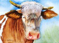 Tiere, Malerei, Horn, Kuh