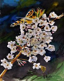 Aquarellmalerei, Natur, Kontrast, Apfelblüten