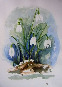 Garten, Blüte, Aquarellmalerei, Schnee