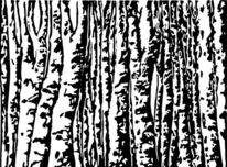 Druckgrafik, Wald, Hochdruck, Birken