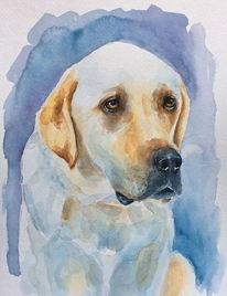 Aquarellmalerei, Tiere, Hund, Schuldgefühl