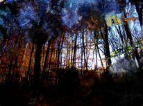 Farbenleuchten, Digitale kunst, Digitale malerei, Wald