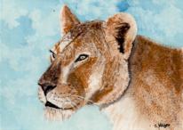 Löwe, Löwin, Tiere, Portrait