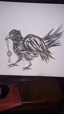 Krähe, Schlüssel, Vogel, Bleistiftzeichnung