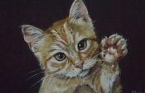 Katze, Pastellstifte gemalt, Hebt pfötchen, Malerei