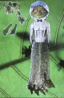 Körper, Spuren, Rinde, Pflanzen