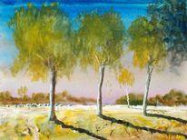 Weiden, Birken, Natur, Baum