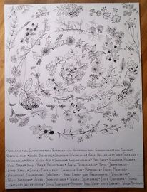Wildpflanzen, Spirale, Kraut, Zeichnung