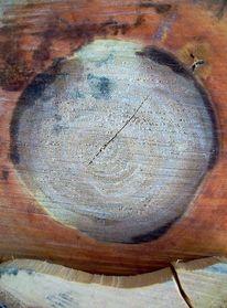 Baum, Modern, Blaufäulnis, Struktur