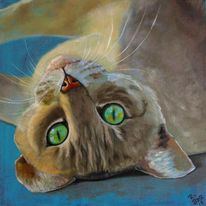 Ölmalerei, Katze, Tiere, Augen