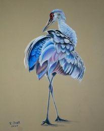 Vogel, Natur, Pastellmalerei, Kranich