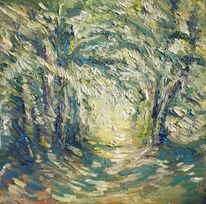 Schatten, Wald, Grün, Frühling
