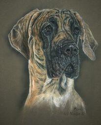 Portrait, Realismus, Malerei, Dogge