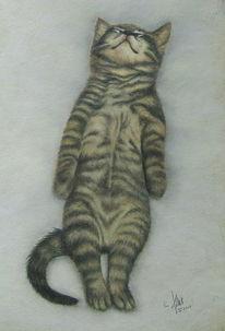 Schlafen katze, Zeichnungen