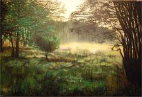 Lichtung, Baum, Waldidylle, Morgenstimmung