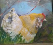 Tiere, Huhn, Frei, Natur
