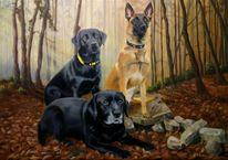 Rettungshunde, Natur, Wald, Tiere