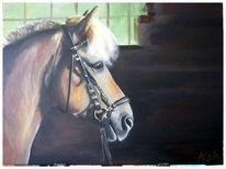 Licht, Schwung, Schatten, Pferde