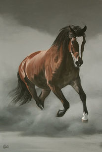 Staub, Pferde, Bewegung, Braun