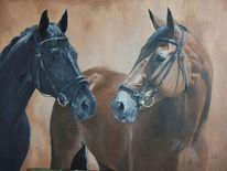 Pferde, Portrait, Braun, Stute