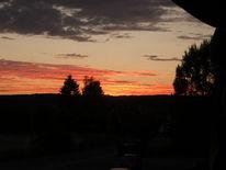 Orange, Wolken, Baum, Himmel