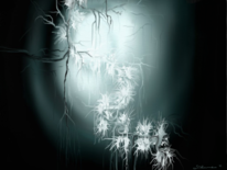 Zweig, Licht, Digitale kunst
