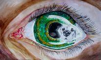 Spiegelung, Hund, Haustier, Augen