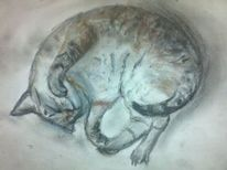 Katze, Haustier, Pastellmalerei, Zeichnungen