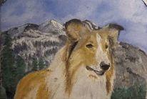 Hund, Collie, Lassie, Malerei