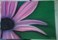 Lila, Blumen, Pastellmalerei, Malerei