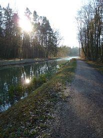 Landschaft, Ludwigskanal, Baum, Herbst