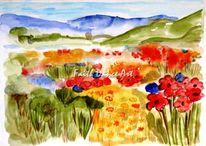 Natur, Blumen, Sommer, Wiese