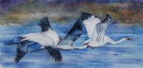 Aquarellmalerei, Vogelflug, Kranich, Vogel
