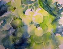Aquarellmalerei, Herbst, Weintrauben, Licht