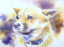 Hund, Aquarellmalerei, Hundeaugen, Portrait