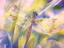 Libelle, Insekten, Transparenz, Aquarellmalerei