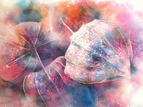 Aquarellmalerei, Pysalis, Aquarell,