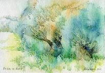 Oberfranken, Haaresquelle, Weiden, Herbst