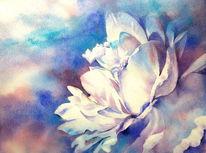 Rose, Blumen, Weiß, Aquarellmalerei