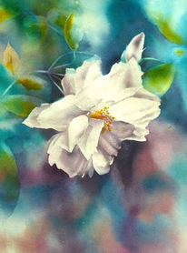 Rose, Garten, Aquarellmalerei, Blumen