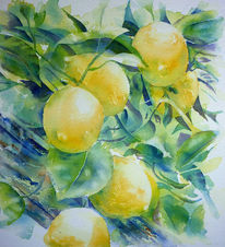 Limone, Zitrone, Aquarellmalerei, Gelb